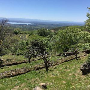 Foto El Vergel de Chilla