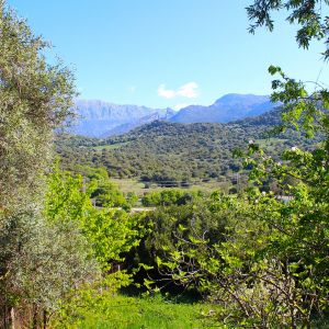 Foto Vivienda Rural El Alamar